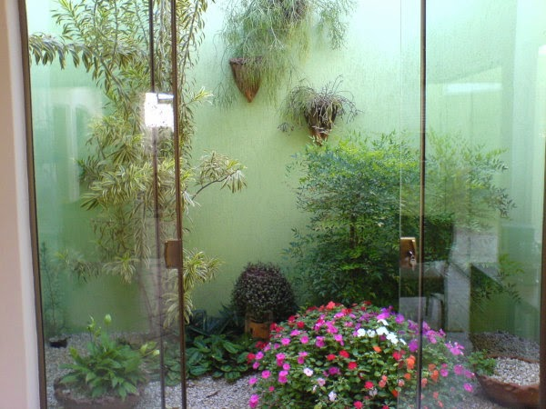 Como Ter Um Jardim Dentro de Casa