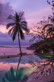 A picture of the infinity pool and beach with a reflection of the sunset and trees at the Apulit Island Resort in the Philippines.
