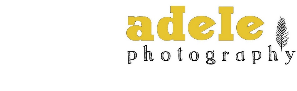 adele photography