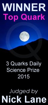 3 Quarks Daily Science Prize 2015