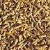 'Tienduizenden extra banen bij gedeeltelijke overstap naar biomassa'
