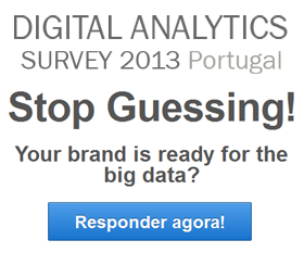 Digital Analytics Survey 2013 Portugal