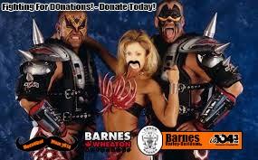 Donate To Lauren Today!