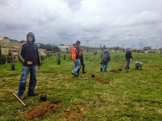 Green Patches Tree Planting