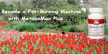 MetaboMax Plus
