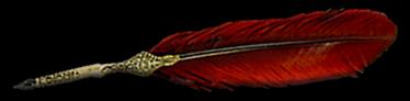 Piuma rossa