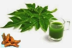 Ramuan Herbal untuk Demam Berdarah