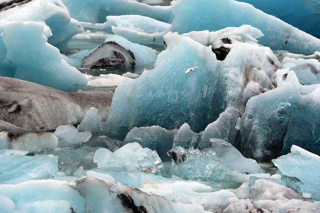 blue icebergs in Jokulsarlon iceland