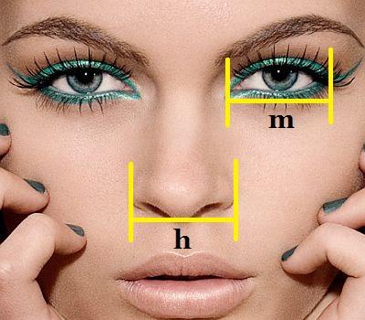 Operasi plastik hidung