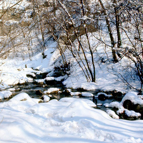 Creek Near The Mississippi River - Snow Photograph