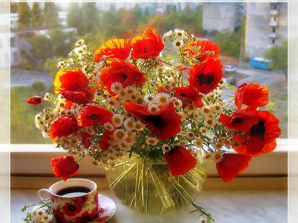 http://4.bp.blogspot.com/-GSOk4GSvGoA/T6qoaHPLx_I/AAAAAAAADPw/-jv1rn_UZ6E/s1600/good+morning+wallpaper+for+facebook+%282%29.jpg