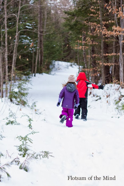 Running Down a Snowy Wooded Path - Flotsam of the Mind