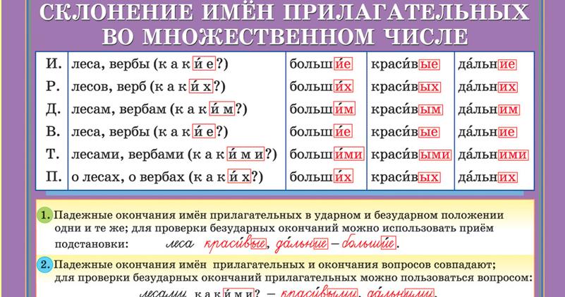 Схема падежей имени прилагательного