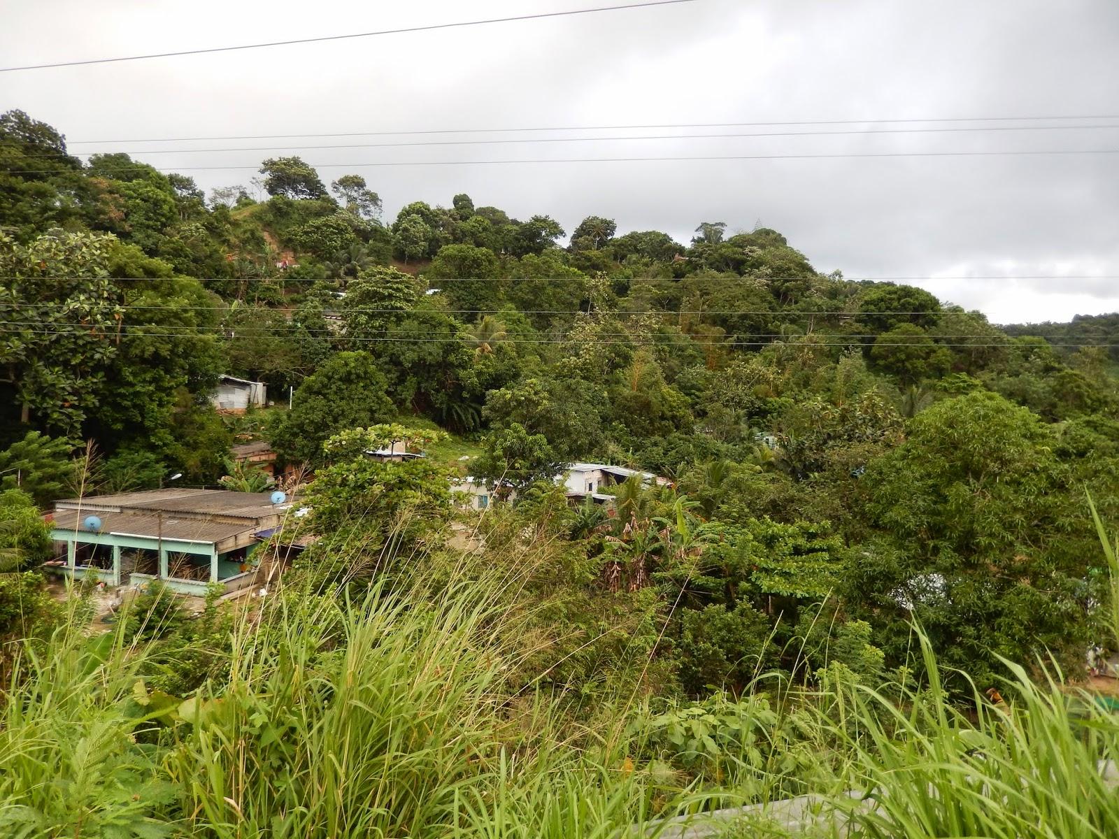 Córdoba, Mexico, jungla, Veracruz