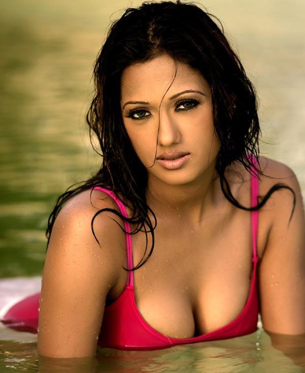 South Indian Actress Hot