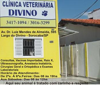 Clinica Divino