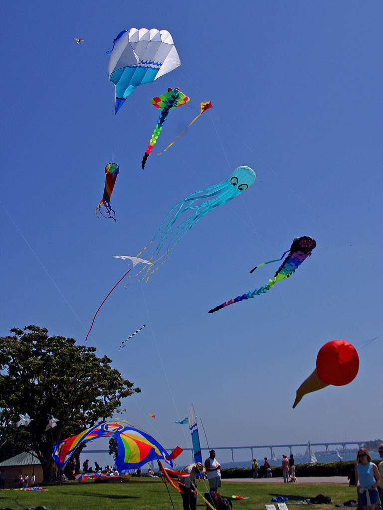 a look at the different kinds of kites flown today The sinhalese arrived in sri lanka late in the with more space for your bags that you can look you can view different kinds of kites being flown over.