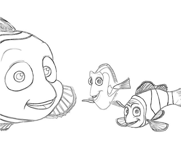 Finding Nemo Coloring Pages Cartoon Characters