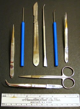 Dissection Kit Tools