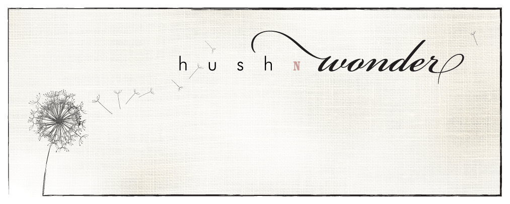Hush n Wonder