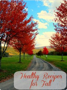 Healthy fall recipes from Pinterest