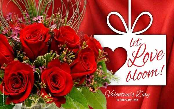 Happy-Valentines-Day-Messages-SMS