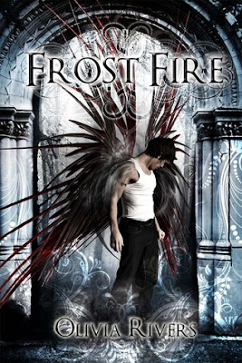 Frost Fire Book Blitz + Giveaway!