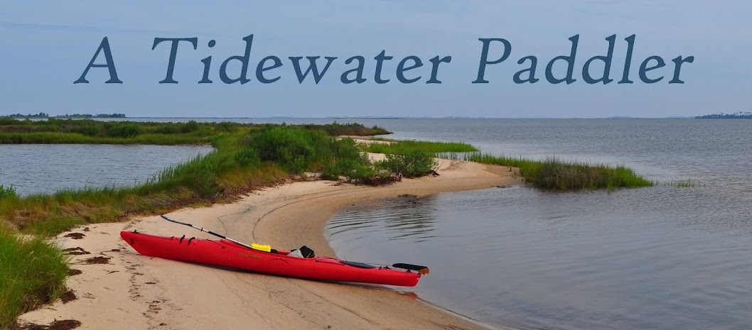 A Tidewater Paddler