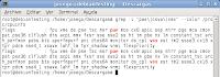 Imagen de un ejemplo de como identificar si podemos virtualizar con XEN en linux