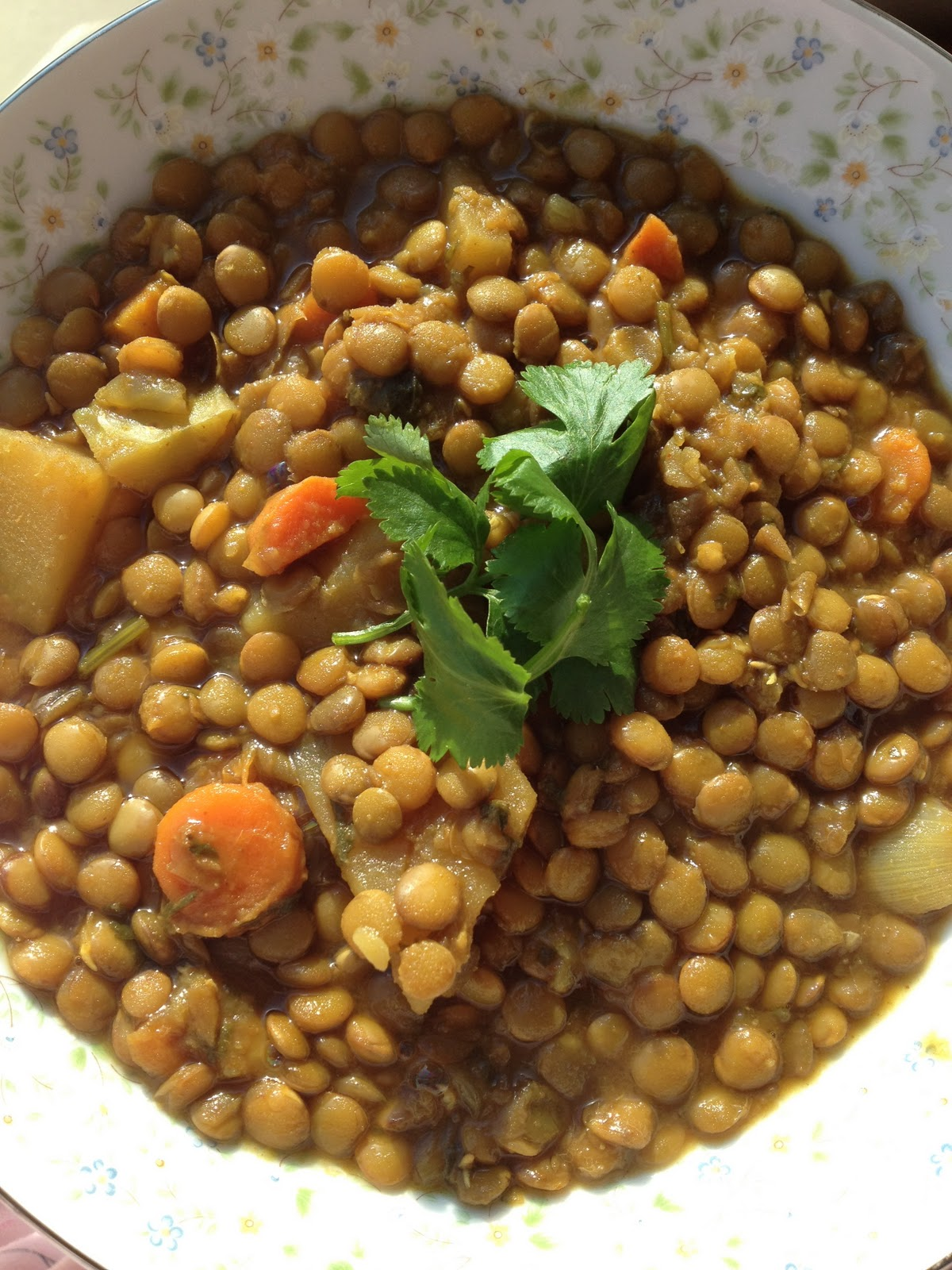 how to cook dried lentils to be soft cooks illustrated