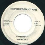 Hawkeye – Spinning 1980s
