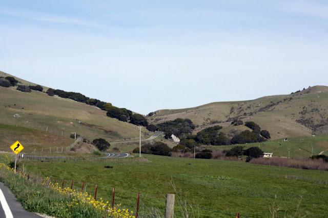 nicasio valley road marin county