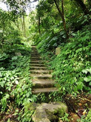 Hiking trail in Yangmingshan Taiwan