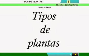 http://cplosangeles.juntaextremadura.net/web/edilim/curso_2/cmedio/plantas02/tipos_plantas02/tipos_plantas02.html