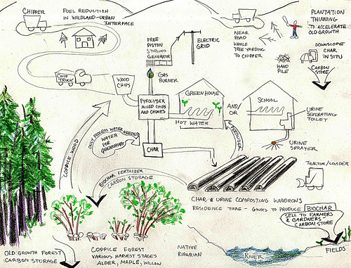 The Biochar Economy