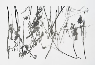 Richard Müller: DSC0069 Bleistift auf Transparentpapier