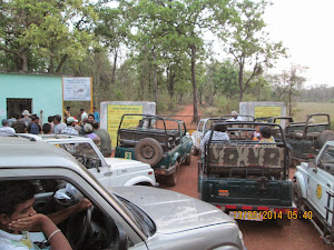 "Heavy tourist traffic to enter ""BUFFER ZONE"" area of Moharli zone."