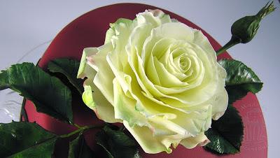 Geburtstagstorte mit Zuckerrose gumpaste rose blütenpaste windbeuteltorte
