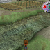 Harvest Moon: A Wonderful Life - Fishing Guide