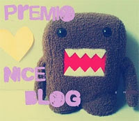 Premio Nice Blog