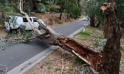 Victorian_Tornado_picture