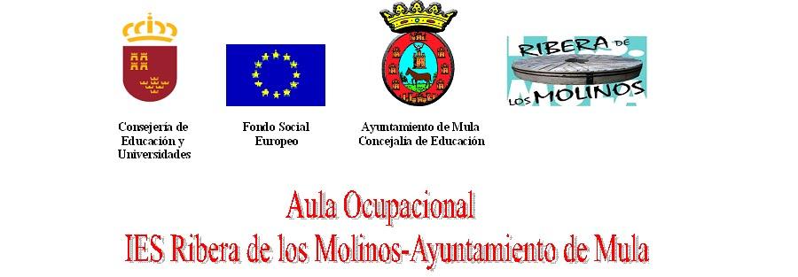 Aula Ocupacional IES Ribera de los Molinos