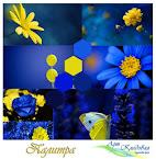 сине-желтая политра