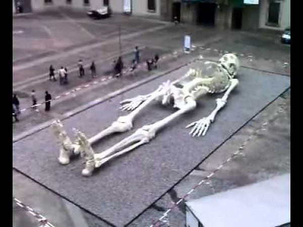 Pics For > Real Mythical Creatures Found Alive