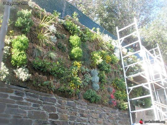 Muro sustentable - Como hacer un muro verde ...