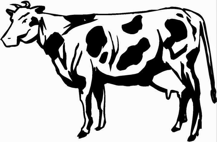 gambar kartun sapi perah