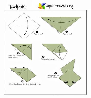 Tadpole Origami
