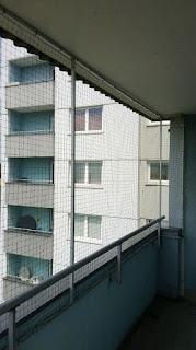 Witten Balkon Katzennetz