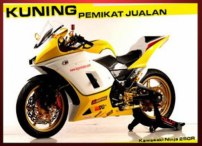 Modifikasi Ninja 250 Street Fighter Elegan