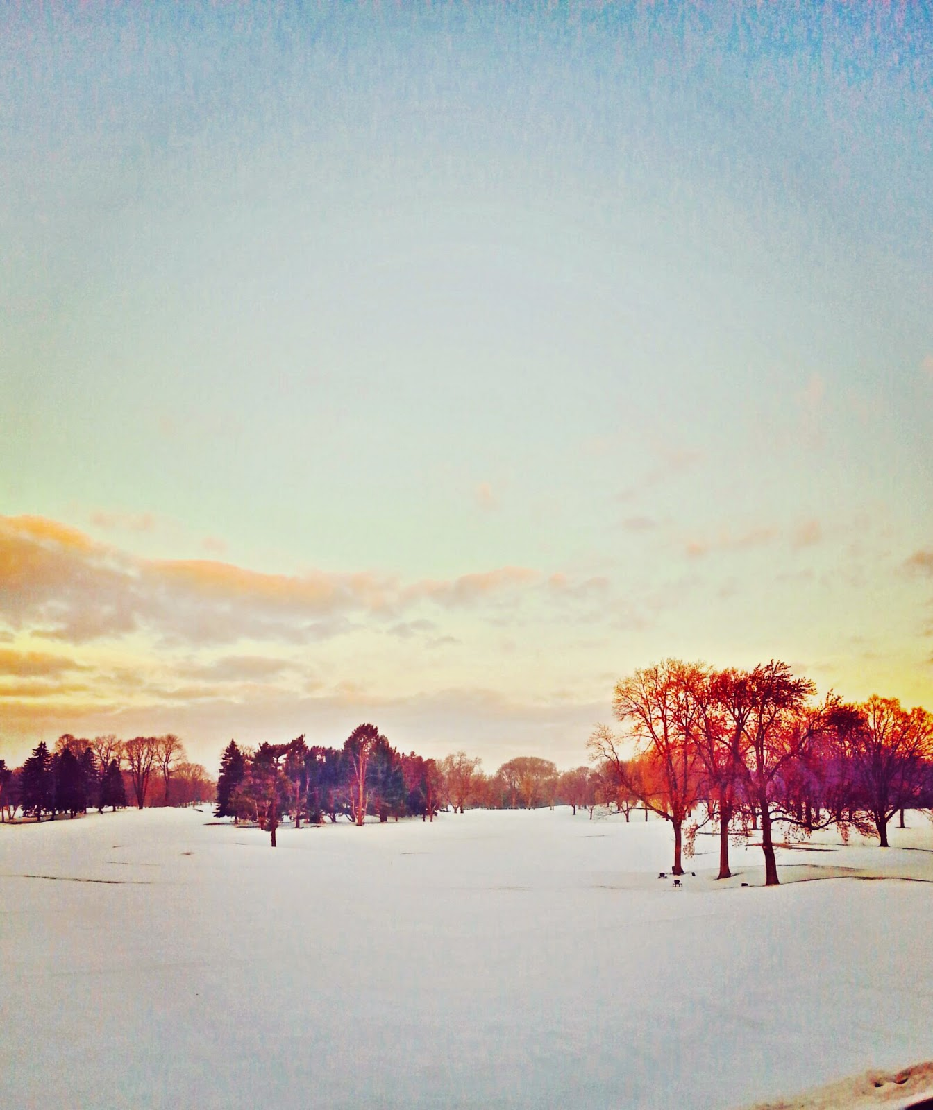 pretty sunrise landscape on the golf course